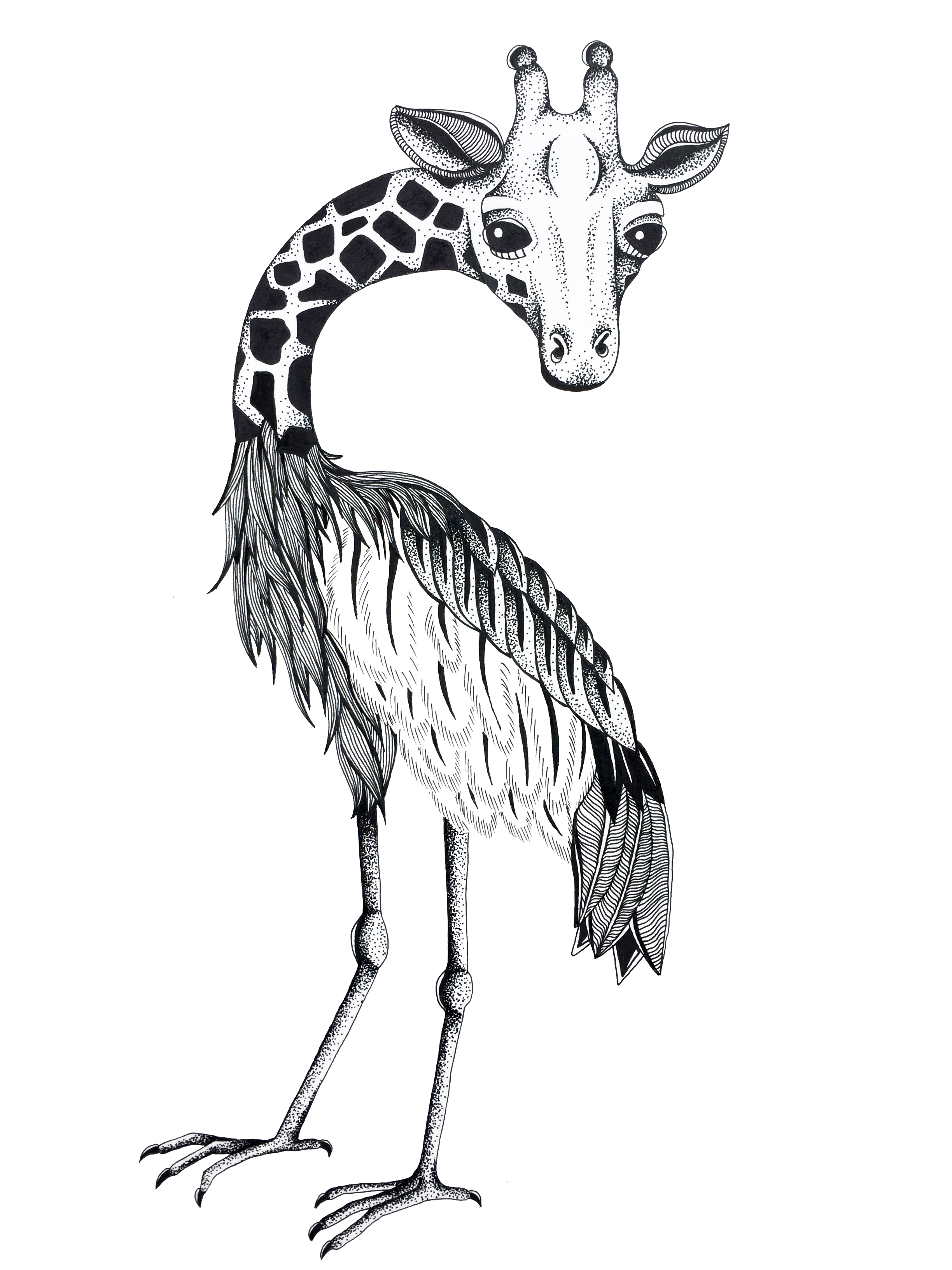 Crane_Giraffe